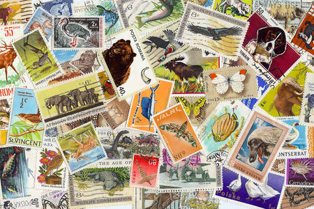 Collection of stamps with animals
