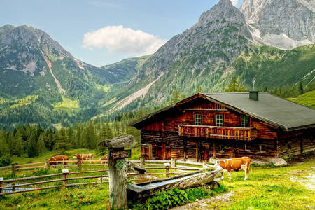 Alpine farm