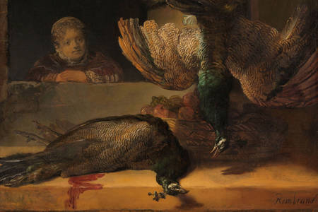 "Rembrandt Harmenszoon Van Rijn: ""Still Life with Peacocks"""