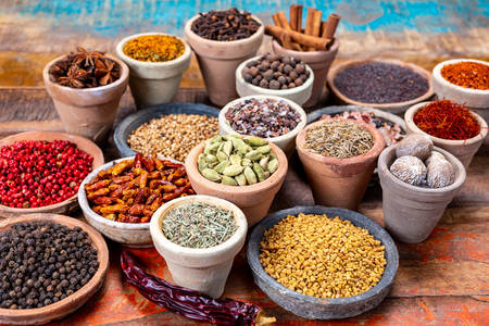 Indian spices and condiments