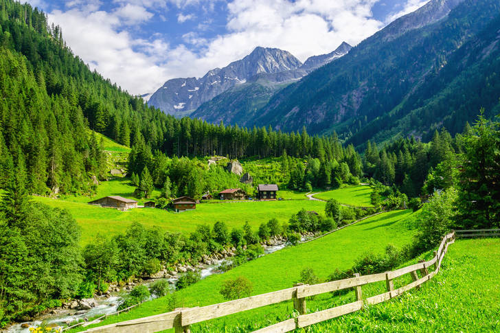 Austrian meadows
