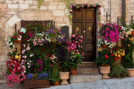 Flower pots at the front door