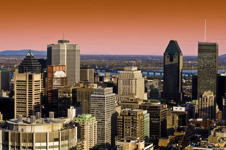 View of the skyscrapers of the city of Montreal