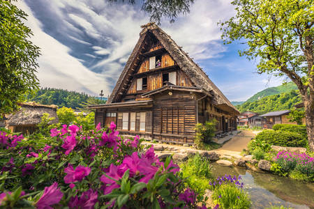 Traditional houses in Shirakawa-go