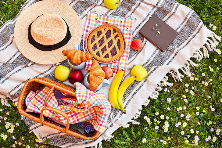 Picnic on a summer day