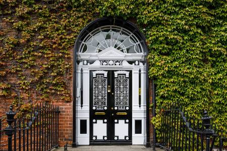 Georgian doors at Fitzwilliam Square