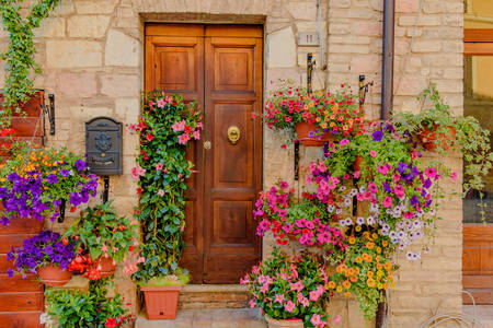 Floral facades of houses in Spello
