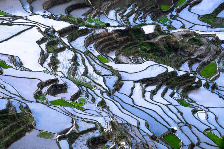 Rice terraces with sky reflection