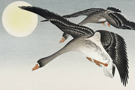 "Ohara Koson: ""Birds at full moon"""