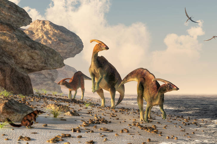 Parasaurolophus on the beach