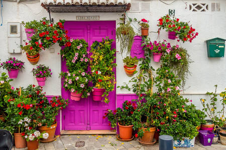 Bright house with flowers