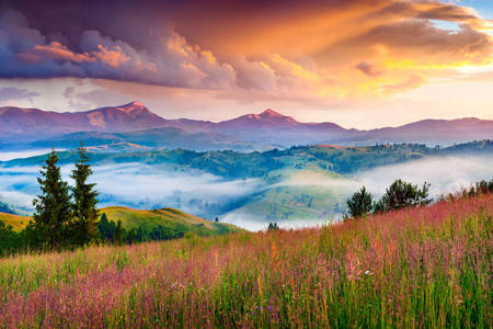 Sunrise in the Carpathians