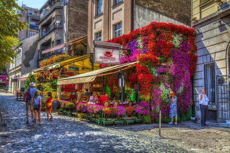 Street cafes entwined with flowers