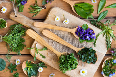 Edible herbs and flowers on wooden spoons