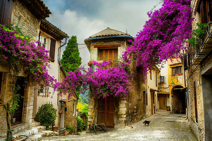 Old city in Provence